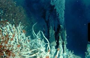 Chimeneas-hidrotermales-submarinas-3jpg