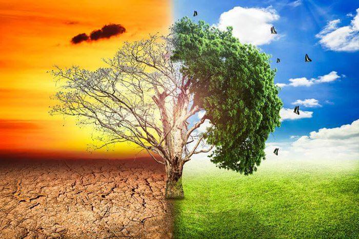 cambio-climatico-e1501269371575