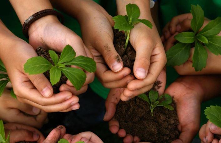 educacion-ecologica