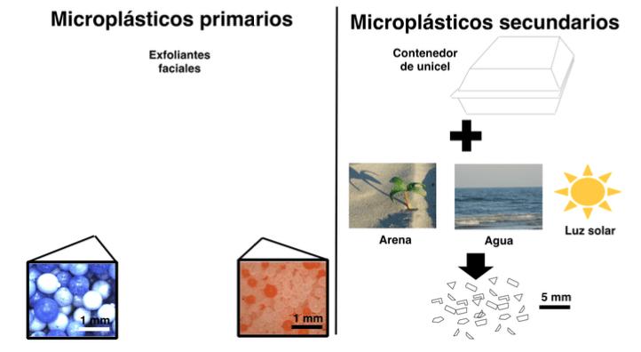 microplasticos-AyP3
